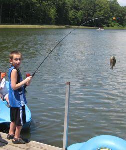 Sunny Hill Fishing T