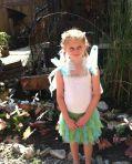 RenFaire Fairy Garden